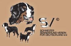 Logo des Vereins SSV